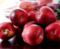 Jablka – úžasné ovoce